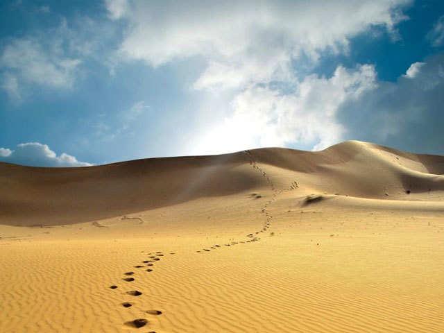 Soak in the heritage & culture of the desert in Bikaner!