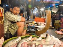 Maniktala fish market in Kolkata