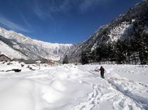 Kashmir Valley is colder than Antarctica after spate of fresh snowfall