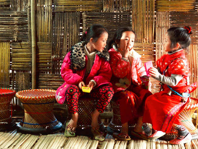 Ziro Valley calling! Trek through the jungles and dance at local fests