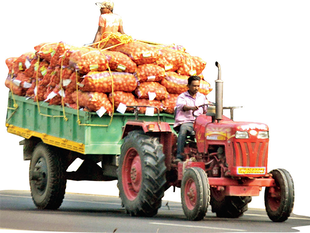 Bengal's potato consumption is not more than 5.5 million tonnes. It generally sends about 4.5 million tonnes to neighbouring states.