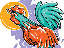 Shares of India's only listed-poultry firm, Venky's (India) Ltd, are on a roll over the past two months or so.