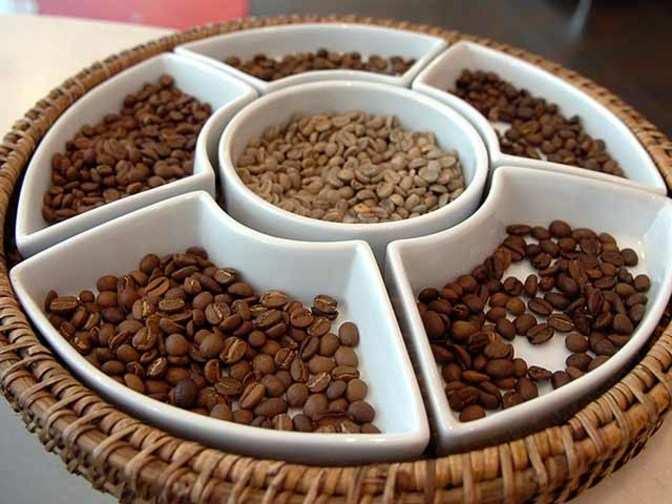 Coffee exports outlook bleak