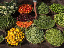 Retail price of tomatoes in Delhi has fallen by 31 per cent to Rs.22 per kg over a month.