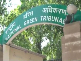 Set up panel to study harmful effects of petcoke: NGT to MoEF