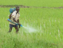 Shares of fertiliser stocks such as Chambal Fertilizers and Coromandel International have risen over 20 per cent each in last one month.