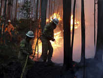 Death toll from Portugal forest fire climbs to 43