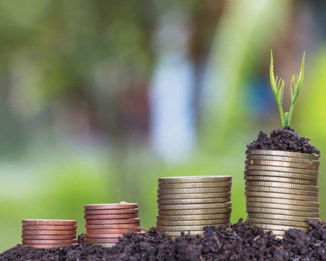 Wealth-creation ideas: Five stocks that may offer you up to 3x return