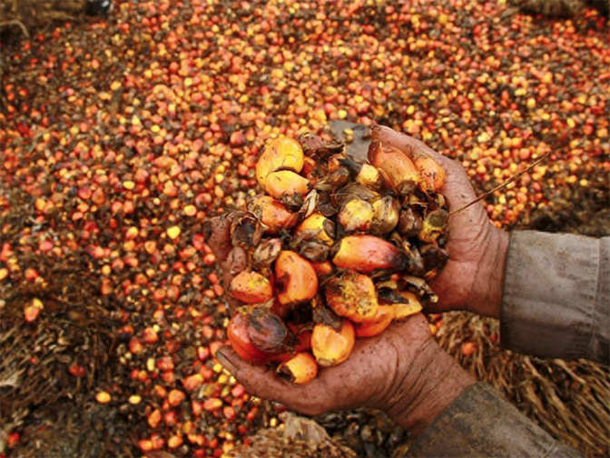 Agri-commodity: Cardamom falls on low demand; palm oil rises