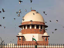The apex court said an accused cannot surrender before a trial court and seek regular bail when a higher court has already granted a pre-arrest bail and the matter is pending there.