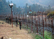 29 armymen martyred, 142 militants killed at LoC since 2014: Government