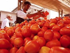 Avoid desi tomatoes for better ones post monsoon