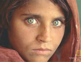 Pak arrests Afghan girl of National Geographic fame