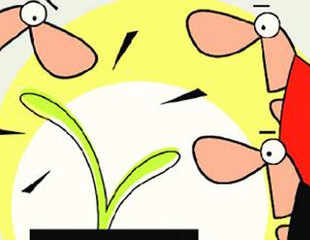 Ask ET Mutual Funds: A suitable mutual fund scheme to start an SIP