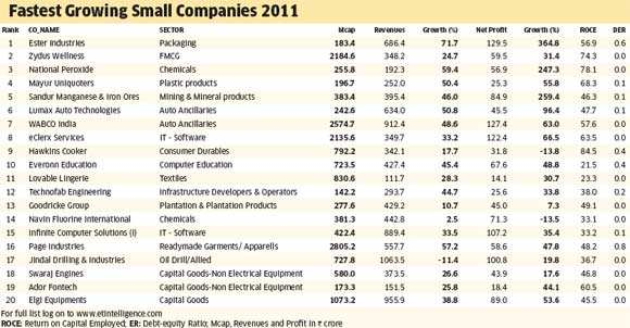 Fastest growing small companies that could be future giants - The