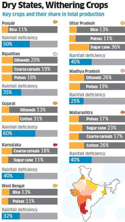 Less rains in key states like Gujarat, UP, Punjab & others may hurt farm production