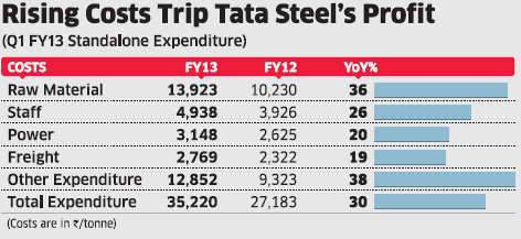 India's oldest steelmaker is confronted by a sharp fall in profits in the June quarter at its Indian operations, which could worsen, if bearish trends prevail in the industry