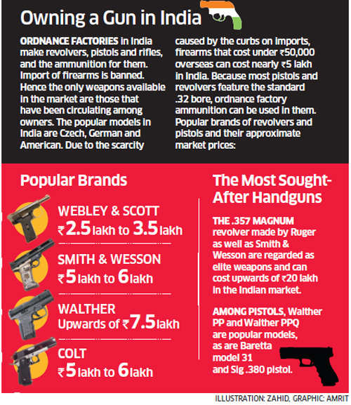 Hired guns: Who will run a check on private guards employed by the rich?