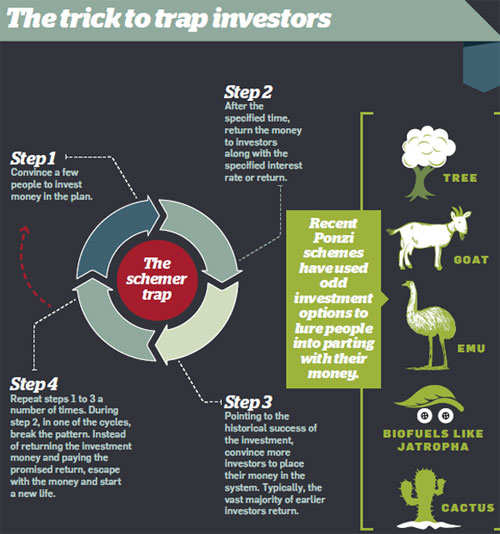 How Investors are trapped