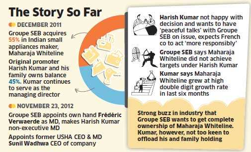 France' Groupe SEB eyes 100 pc stake in home appliances maker Maharaja Whiteline