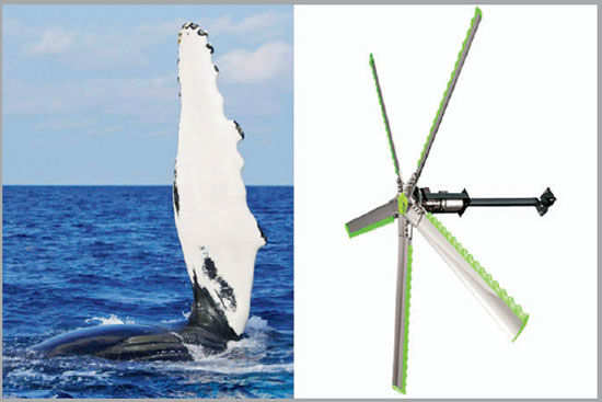 14 smart inventions inspired by nature