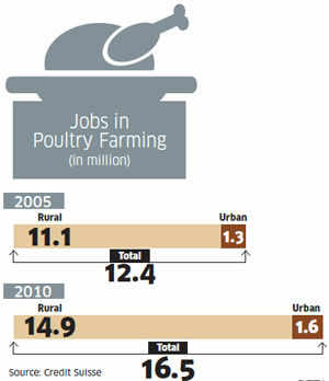 Rs 40,000 crore poultry meat market: Indians prefer chicken; mutton, beef far behind