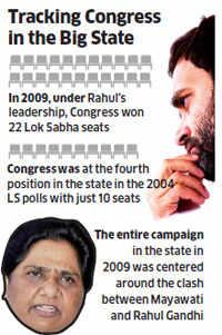 Rahul Gandhi's Uttar Pradesh record: From 25% to 7%