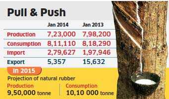 Natural rubber imports drop 20% in January