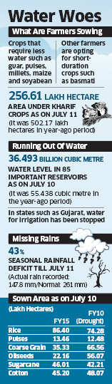 Poor monsoon in 2014 takes a toll on food crops, farmers planting alternative crops