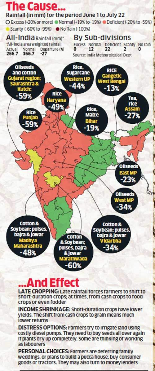 Late monsoon and its impact: Weak rainy season makes farmers stare at lower output, hard choices