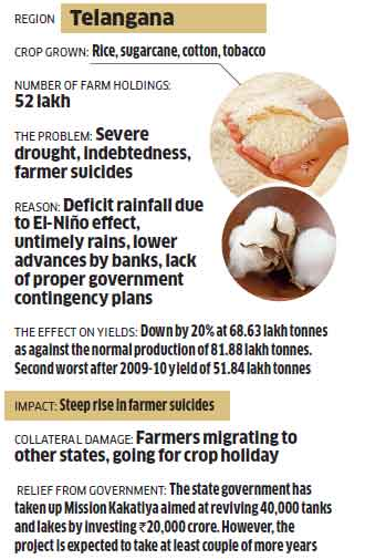 Telangana: Unseasonal rains coupled with unreliable power supply have driven farmers to despair