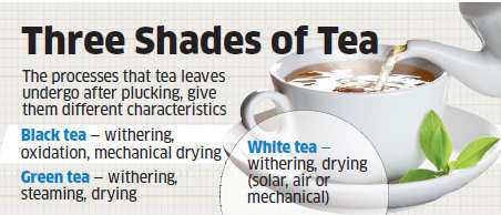 Why white tea has replaced green tea as the new drink sensation