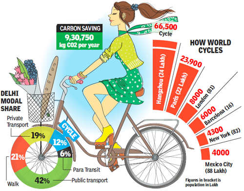 Sick of Delhi's pollution? Cycle to work