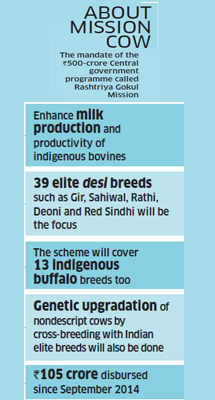 How & why the NDA government is gearing up for mission to protect and promote the cow