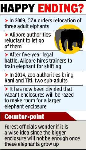 Jumbos in Alipore Zoo will not have to joust for space anymore