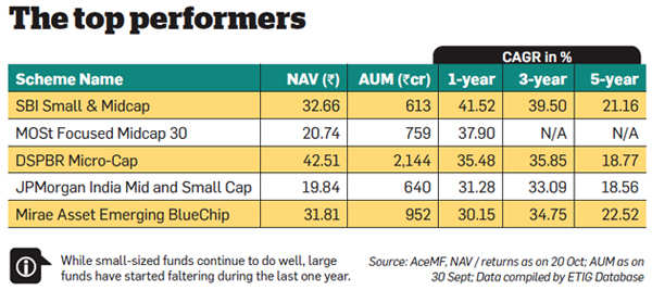 Why you should avoid mid and small-cap funds