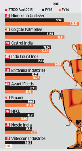 ET 500: Companies that score the most in the Return on Equity (RoE) race