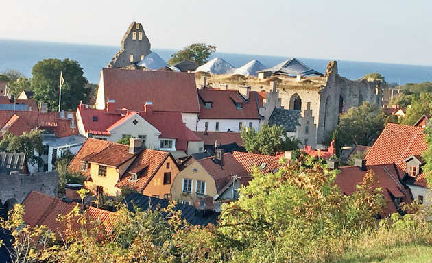 View of Visby with St Nicolai Ruin and the sea in the background. (Picture by: Bhavna Satyanarayan)