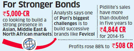 Bharat Puri ropes in Bain to chart Pidilite's global growth plan