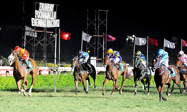 Horsing around: Cyrus Poonawalla upset over lack of Indian participation in Asian Racing Conference
