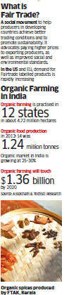 How organic farming and right prices are helping Kerala farmers