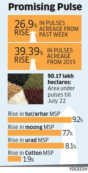 Farmers take a liking to pulses this Kharif season
