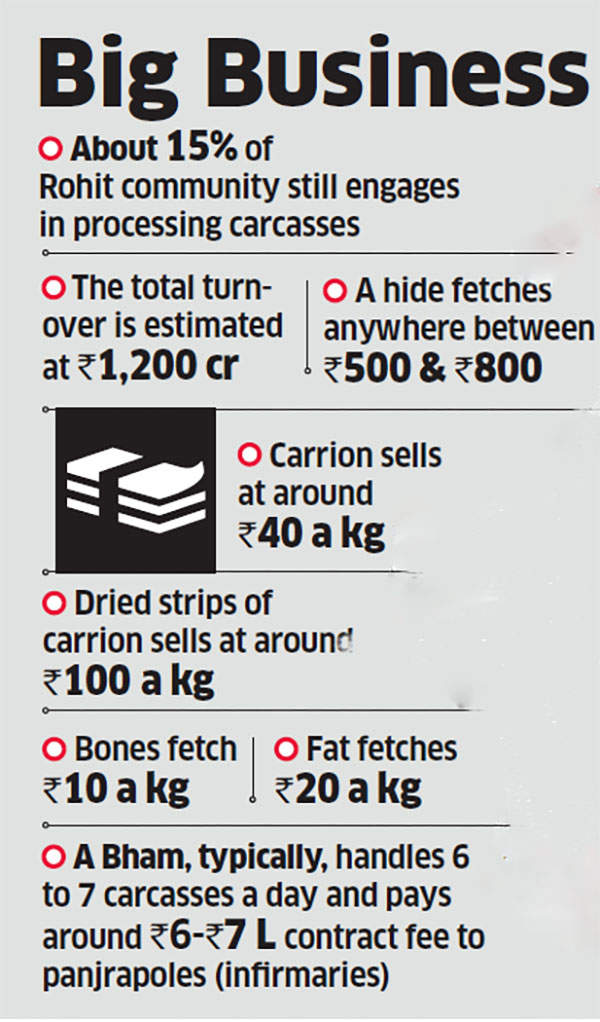 In Gujarat, dead cows are not mere carcasses but a Rs 1,200-crore business