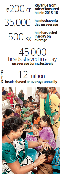 Tirumala's gleaming scalps spell shining prospects for hair