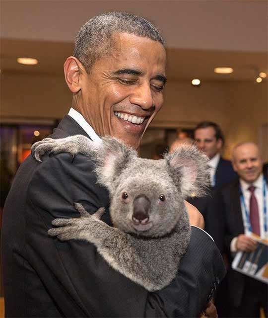 From Obama to Putin, all the times when gifting animals boosted diplomacy