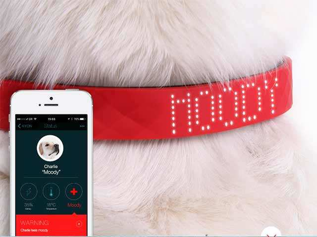 Sad, happy, angry? Now, know your pet's mood with this collar