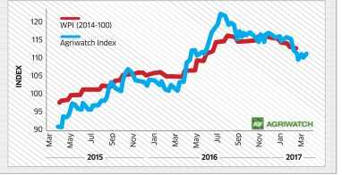 Agri Commodities Index rises 0.74%/; Cereals, pulses gain