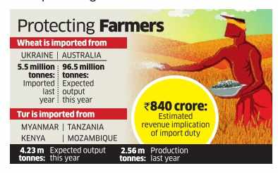Govt imposes 10% import duty on wheat, tur
