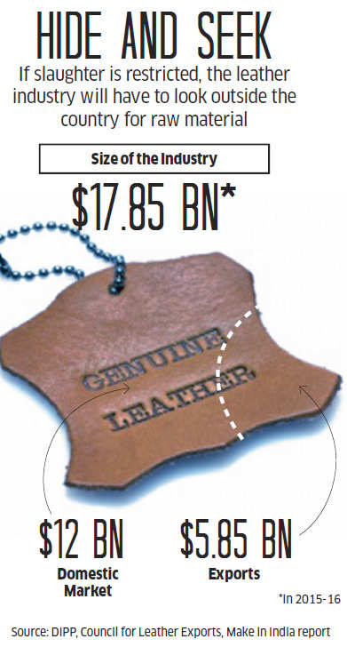 Will the Environment Ministry order really ruin leather and meat processing industries?