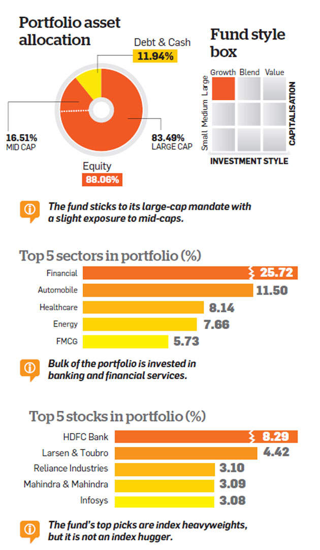 SBI Bluechip Fund: Among the best large-cap mutual funds